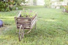 装饰独轮车在有里面花的一个庭院里 免版税库存照片