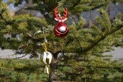 装饰球鹿和球糖果圣诞树的 库存照片