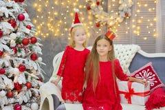 装饰白色绿色圣诞树的圣诞快乐和节日快乐逗人喜爱的小孩女孩户内用很多礼物 免版税图库摄影
