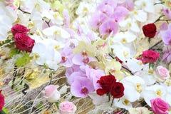 装饰的不同的花 库存图片
