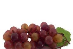 装饰的假塑料红葡萄 库存图片