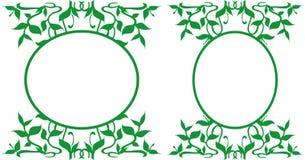 装饰的卵形框架,例证-花卉题材 免版税库存照片