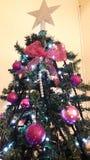 装饰的圣诞树关闭的豪华房子 库存照片
