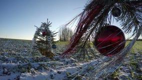 装饰的圣诞树冷杉在冬天和日落,时间间隔4K 影视素材