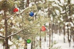 装饰的圣诞树在有减速火箭的effec的一个多雪的杉木森林里 库存照片