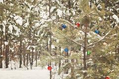 装饰的圣诞树在有减速火箭的effec的一个多雪的杉木森林里 免版税图库摄影