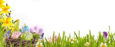 装饰的复活节彩蛋在春天草甸 图库摄影