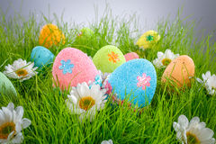 装饰的复活节彩蛋 库存图片