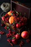 装饰的小箱用果子和莓果 免版税库存照片