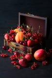 装饰的小箱用果子和莓果 库存照片
