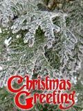 装饰的文本圣诞节问候设计冬天祝贺卡片 免版税库存照片