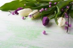 装饰的新鲜的郁金香花束  库存照片