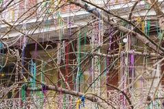 装饰的树在新奥尔良,路易斯安那 免版税库存照片