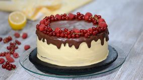 装饰的白色奶油蛋糕与莓果 夏天莓果蛋糕 股票录像