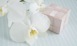 装饰的礼物盒与兰花花 库存图片