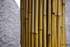 装饰的竹子在城市公园 免版税库存照片