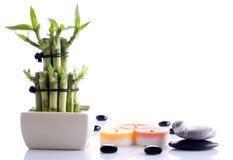 装饰的竹子 图库摄影