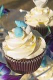 装饰的结霜的杯形蛋糕 库存照片