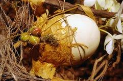 装饰的蛋生活驼鸟s仍然 免版税库存照片