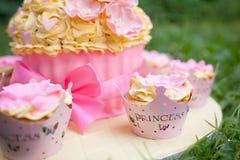 装饰的蛋糕 库存照片