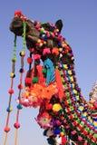 装饰的骆驼, Jaisalmer,印度纵向  免版税库存照片