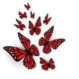装饰的蝴蝶 库存照片