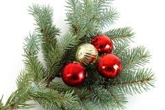 装饰的3根大树枝圣诞节 免版税图库摄影