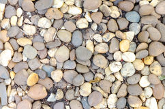 装饰石渣小卵石石头在庭院里 免版税库存照片