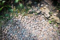 装饰石头,绿色植物庭院背景 圆的小卵石纹理白天 免版税库存图片