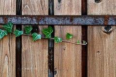 装饰篱芭由板条4做成 免版税库存照片