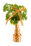 装饰结构树维生素 免版税库存照片