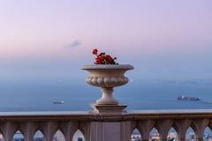 装饰罐的日落视图有大竺葵的在Bahai庭院的上部大阳台的阳台栏杆在海法市 免版税库存照片