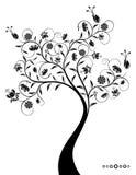 装饰美妙的结构树 库存图片