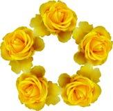 装饰花卉花圈 免版税库存图片