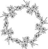 装饰花卉花圈 库存图片