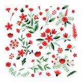 装饰花设置了 库存图片