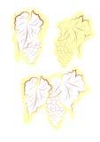 装饰葡萄向量 免版税库存照片