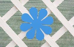 装饰蓝色花 库存照片