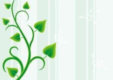 装饰藤本植物 库存例证