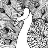 装饰装饰孔雀 Doolle样式 免版税库存照片