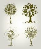 装饰设计叶子结构树 免版税库存图片