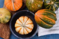 装饰金瓜、南瓜和南瓜顶上的看法  图库摄影