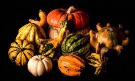 装饰金瓜, Caravaggio照明设备样式 免版税图库摄影