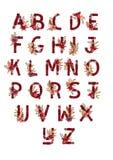 装饰集合花卉热带热带样式信件字母表abc字体 在手拉的叶子花上写字装饰 免版税库存图片