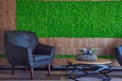 装饰青苔的普通概念图象 使用为室内设计、有机新生活或者办公室空间 图库摄影