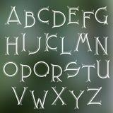 装饰细体拉丁字体 向量例证