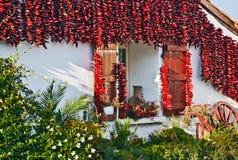 装饰巴斯克房子的红色埃斯佩莱特胡椒 免版税图库摄影