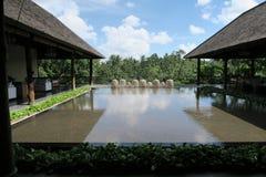 装饰水池在旅馆里 免版税库存图片
