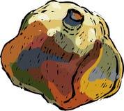 装饰pomgranate 库存照片