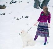 有samoed狗的女孩 库存图片